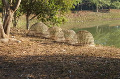 Chicken coop and nature in Chiangmai Stock Photos