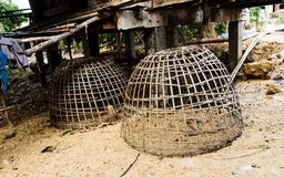 Chicken coop. Thailand royalty free stock image