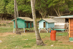 Chicken coops in the tropics Stock Image
