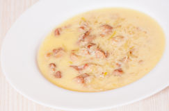 Chicken cream soup Stock Photography