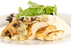 Chicken with creamy mushroom sauce Royalty Free Stock Photo
