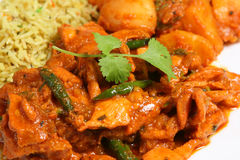 Chicken Curry. Close-up of Garlic Chilli Chicken curry with rice and vegetables Stock Photos