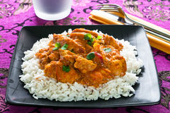 Chicken Curry Royalty Free Stock Image