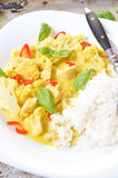 Chicken curry with basmati rice and chili Royalty Free Stock Image