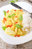 Chicken curry with basmati rice and chili Royalty Free Stock Images