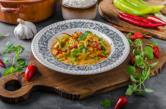 Chicken curry delish food Royalty Free Stock Photos