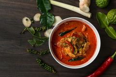 Chicken curry with different spices on dark background Royalty Free Stock Photo