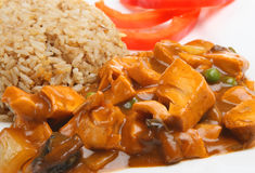 Chicken Curry & Egg Fried Rice. Chinese chicken curry with egg fried rice Stock Images