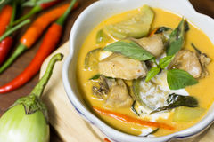 Chicken curry with eggplant Royalty Free Stock Photo