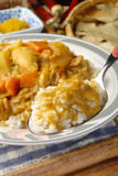 Chicken Curry and Rice Royalty Free Stock Photo