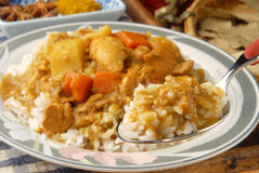 Chicken Curry and Rice Royalty Free Stock Photos