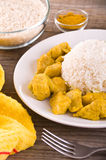 Chicken curry with rice Caribbean. Stock Images