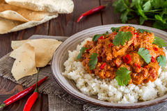 Chicken curry with rice and cilantro. Stock Images