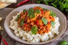 Chicken curry with rice and cilantro. Royalty Free Stock Image