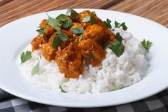 Chicken curry with rice and cilantro on white plate Royalty Free Stock Photography