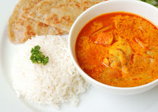 Chicken curry with rice and roti. Chicken curry bowl serves with rice and roti, close up top view Stock Image
