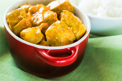 Chicken curry with rice Royalty Free Stock Image