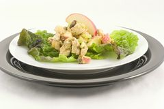 Chicken curry salad. I have done a curry and lemon chicken salad with apples,raisins and celery, with three different plate presentations royalty free stock image