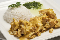 Chicken with curry sauce. Served with plain rice Royalty Free Stock Images