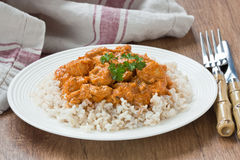 Chicken curry sauce Royalty Free Stock Photo