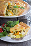 Chicken curry savory pie Royalty Free Stock Photo