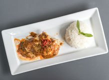 Chicken Curry thai food sauce with rice. Royalty Free Stock Photo