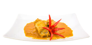 Chicken Curry VI Stock Images