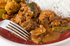 Chicken curry and white rice closeup Stock Photos