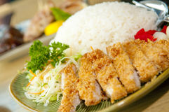 Chicken Cutlet Rice Stock Images