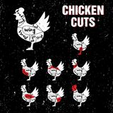Chicken Cuts Vector Template Set Royalty Free Stock Photos