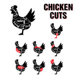 Chicken Cuts Vector Template Set Royalty Free Stock Images