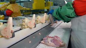 Chicken deboning cones with a packing line in the background. An industrial breast cap deboning line with a packing line in the background stock footage