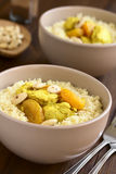 Chicken and Dried Apricot Stew with Couscous Royalty Free Stock Image