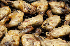 Barbecued drumsticks Stock Photography