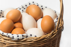 Chicken and duck eggs Royalty Free Stock Photos