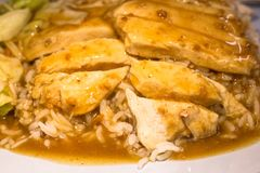Chicken and duck steam on rice.Closed up stock photos