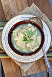Chicken and Dumplings Royalty Free Stock Photo