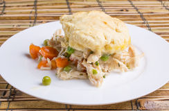 Chicken and dumplings on a plate Royalty Free Stock Photography
