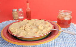 Chicken and Dumplings Royalty Free Stock Image