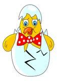Chicken easter. Animal bird nature egg children holiday food illustration Royalty Free Stock Photo