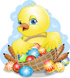 Chicken and Easter. Chicken before basket with Easter eggs vector illustration