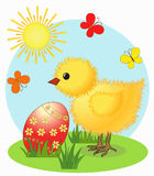 Chicken. Easter card Stock Photography