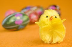 Chicken and easter eggs Stock Photos