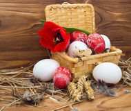 Chicken and Easter eggs Royalty Free Stock Image