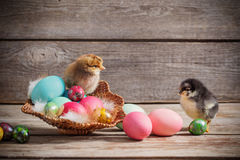 Chicken with Easter eggs. On wooden background Stock Photo
