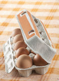 Chicken egg Stock Images