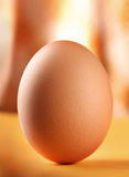 Chicken egg Royalty Free Stock Image