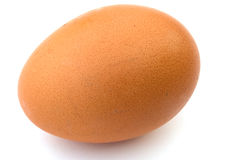 Chicken egg. Brown egg on a white background a close up Royalty Free Stock Photography