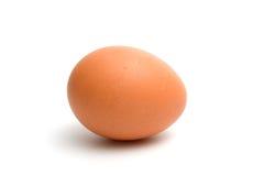 Chicken egg Stock Photo