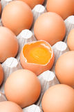 Chicken egg Stock Photo
